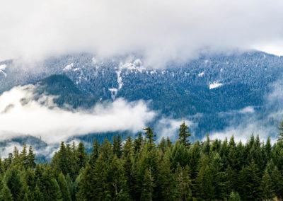 Mount Hood National Forest copy